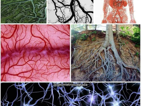 Powers of nature!!!