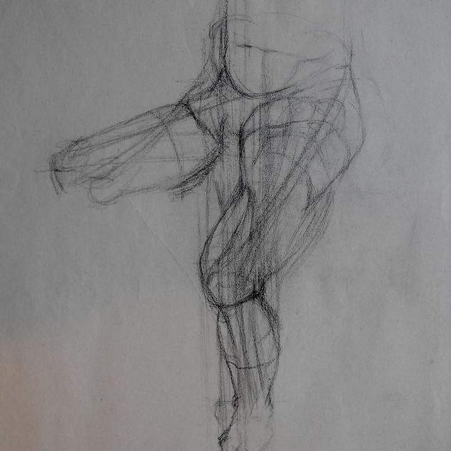 Anatomical sketch.
