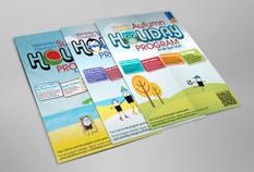 Branding + Illustrations