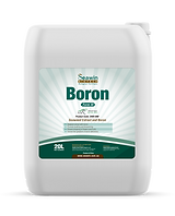 Boron Form III - 20L.png