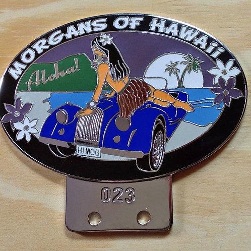 HAWAII HIMOG BADGE - ARTIST'S VERSION - RARE!