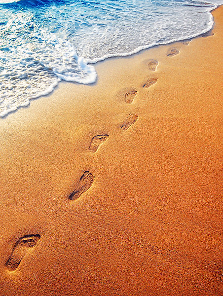 footprints in the sand - summer lotion a