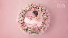 The cutest newborn photo session for a baby girl!