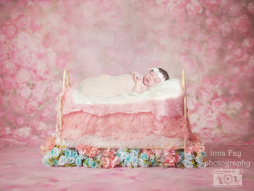 Beautiful baby girl newborn session