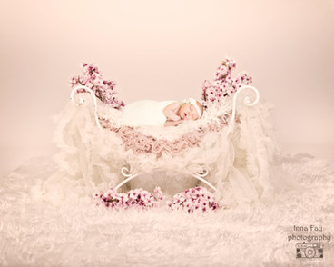 Amazing newborn photo session for a baby girl