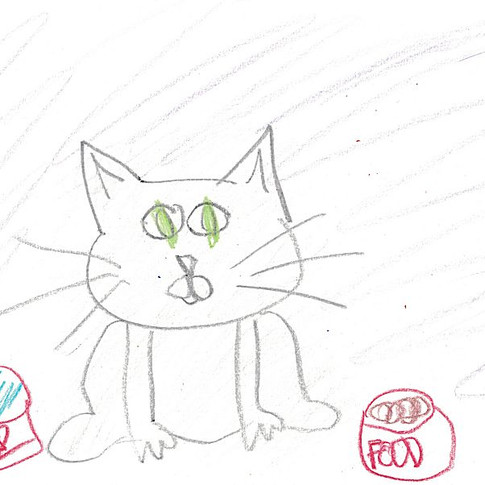 """""""STUPID CAT"""" by Glide Thunderbolt"""
