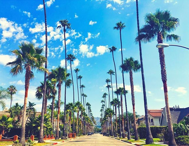 📍Beverly Hills, California - Cruising Around & Enjoying The Always Perfect California Weather 😎☀️�