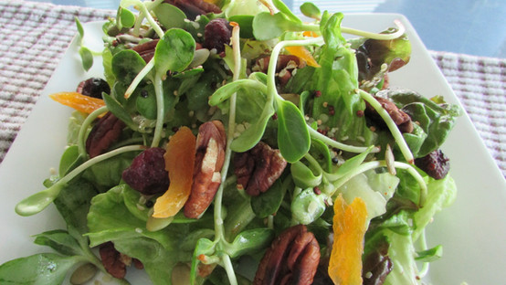 Sprouted Salad with Pecans & Cranberries