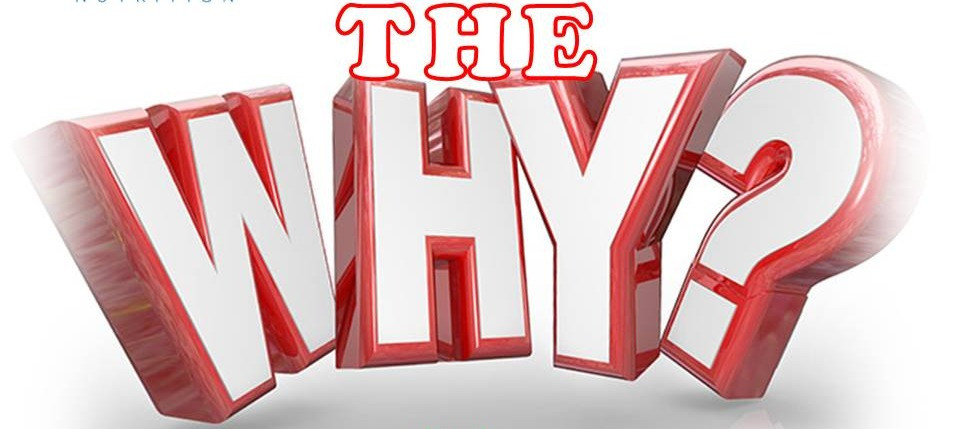 With the right WHY, any HOW is possible By Tony Vassallo