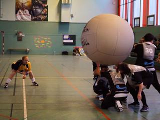 Les Panthères pour promouvoir le Kin-Ball dans le sud-ouest français