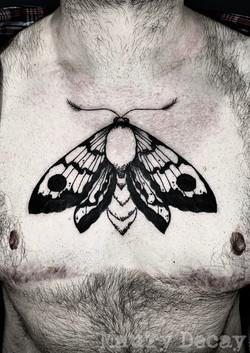 Blackwork moth