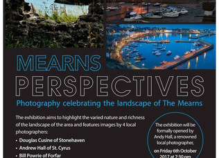 Mearns Perspectives