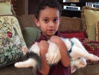GREAT Kitten & Child !