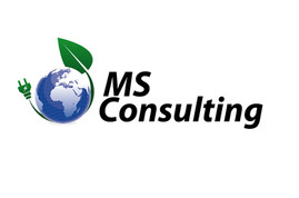 MS Consulting