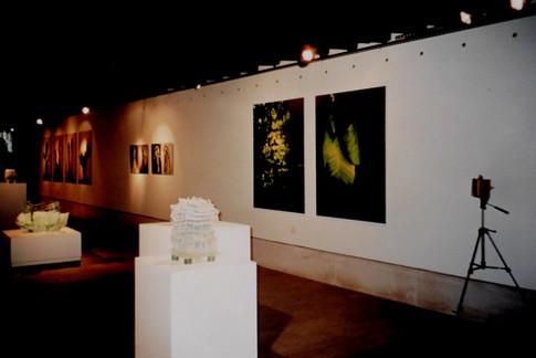 Ausstellung Galleria Rosella Junck Venedig V