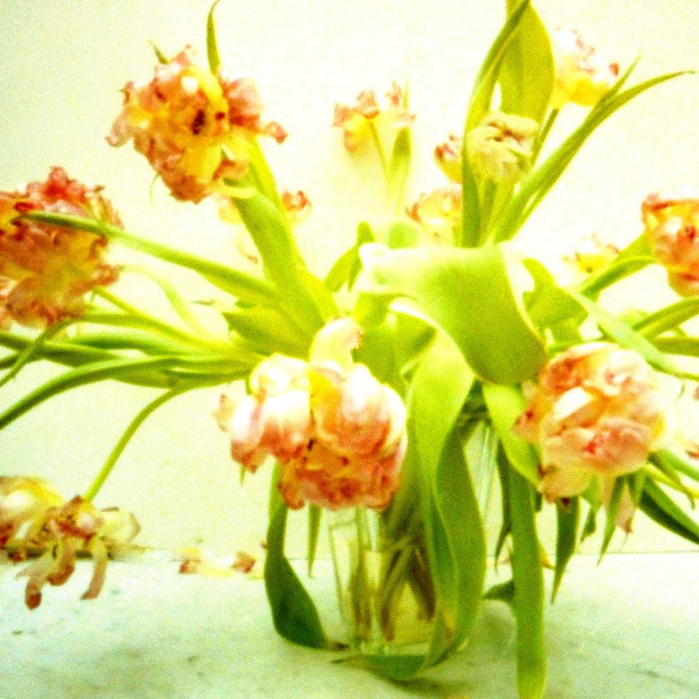 Blumenstrauß XIII