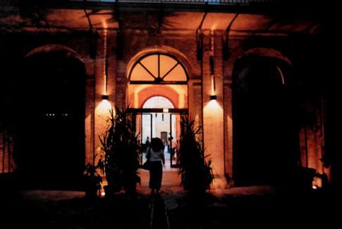 Ausstellung Botanik Camerino IV