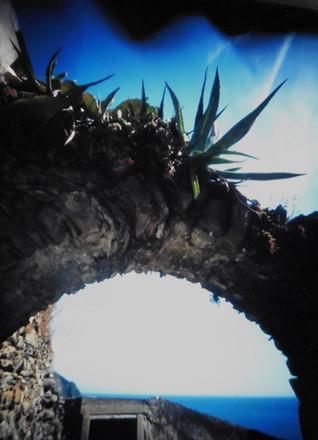 Cinque Terre, Riomaggiore Detail