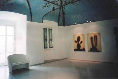 Ausstellung Botanik Camerino II