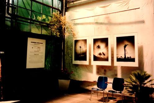 Ausstellung Botanischer Garten Erlangen IV