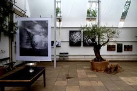 Ausstellung Botanischer Garten Erlangen III