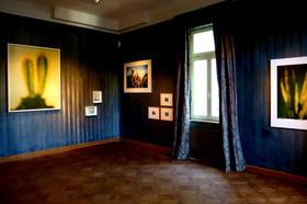 Ausstellung Bühlers Fürth I