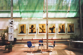 Ausstellung Botanischer Garten Erlangen I