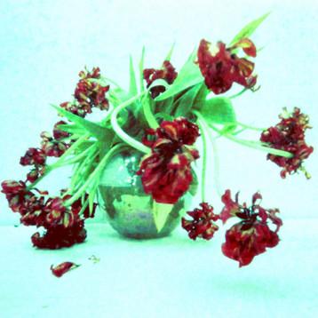 Blumenstrauß VIII