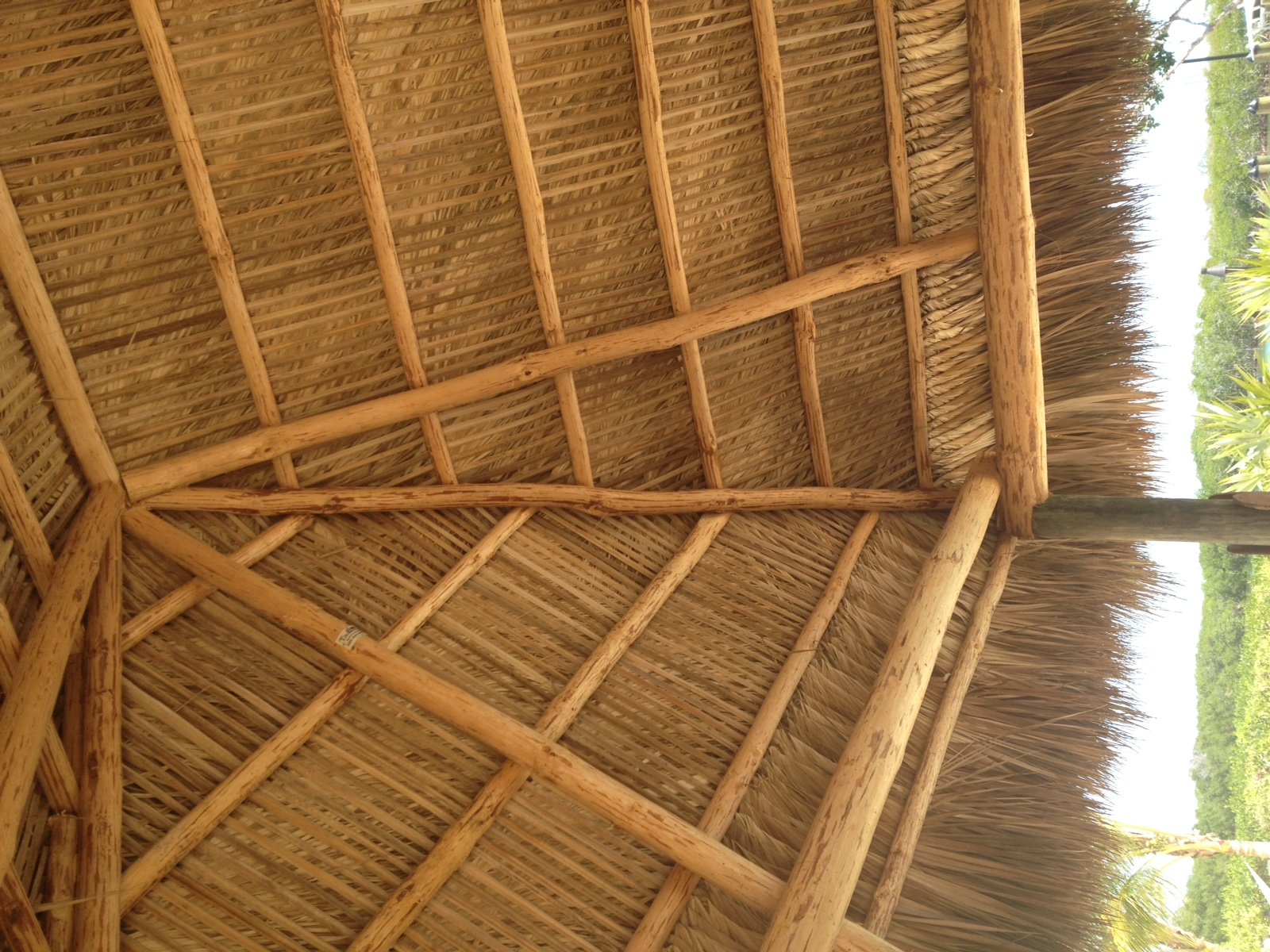 Beautiful Thatch Job