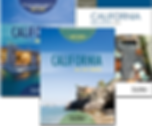 Californa real estate principles book