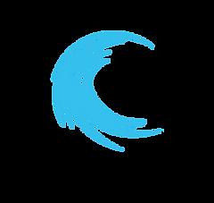 webinar tsunami logo.png