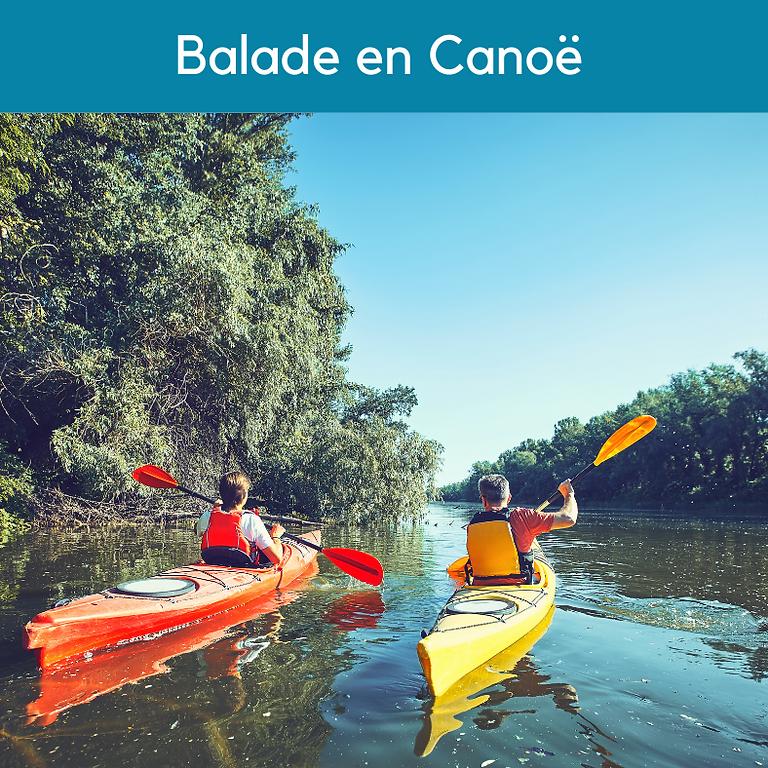 Gascogne Environnement : Visite Nature - Balade en Canoë