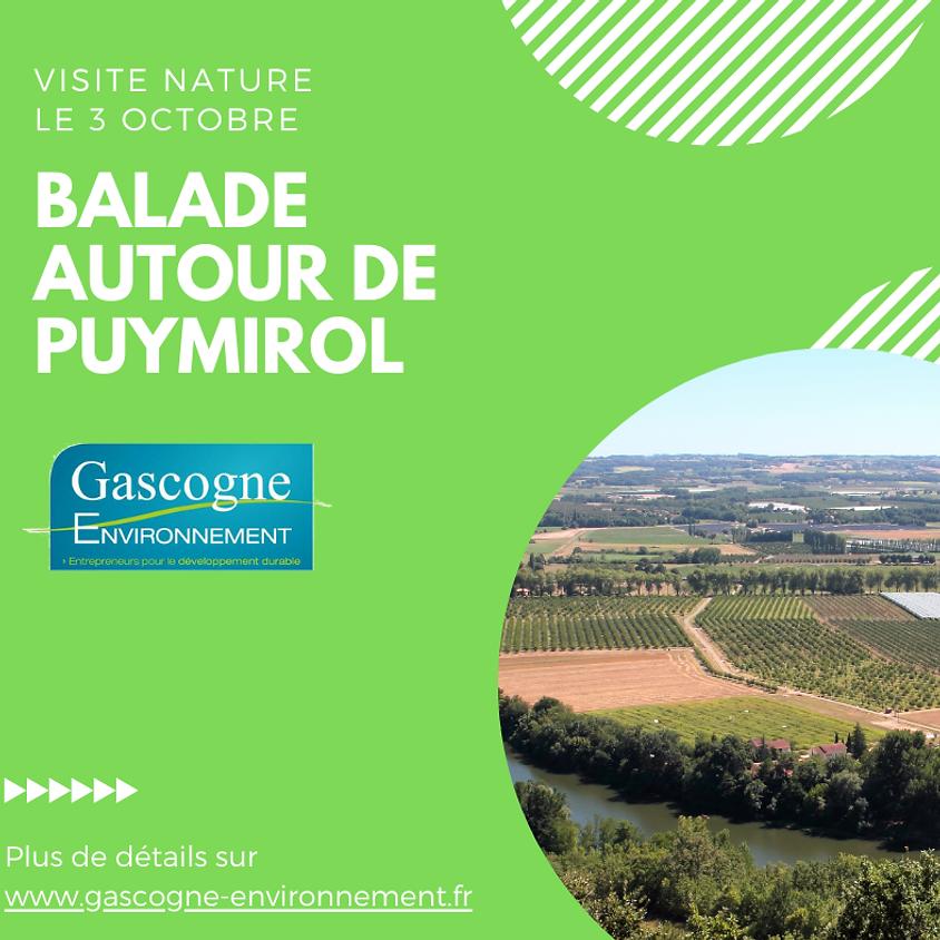 Balade autour de Puymirol
