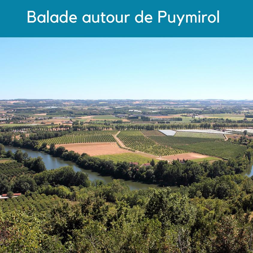 Gascogne Environnement : Visite nature Balade autour de Puymirol