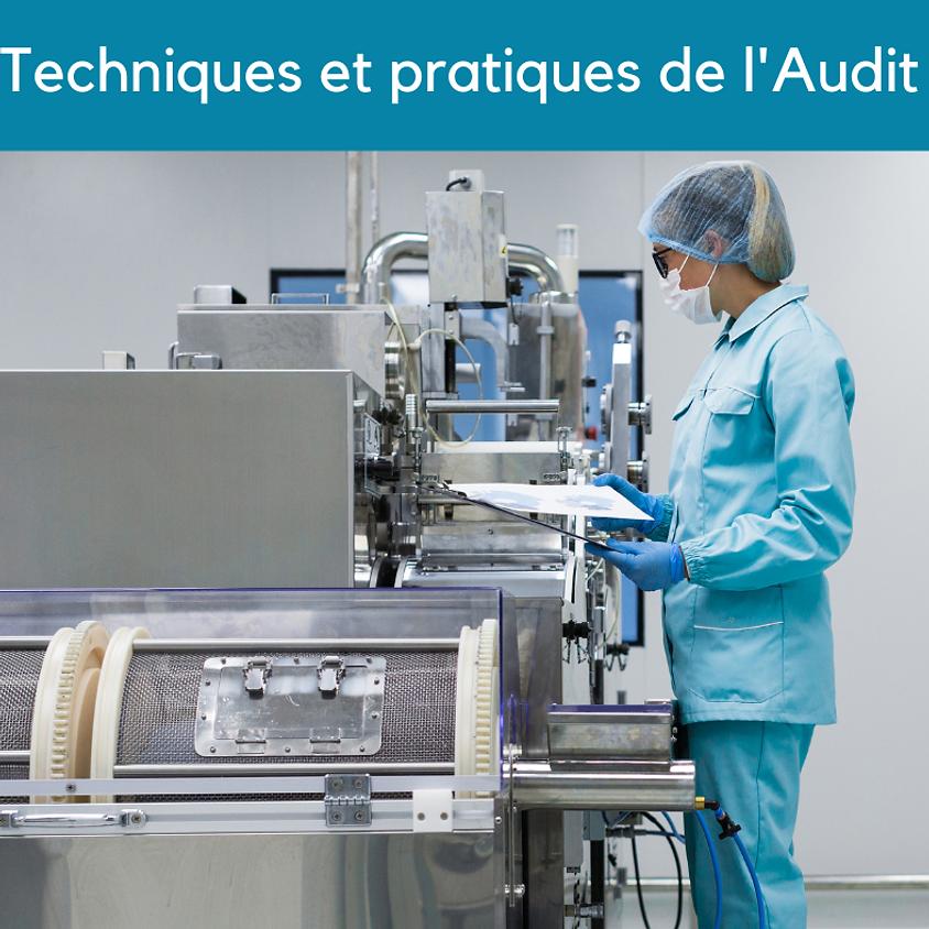 Techniques et pratiques de l'Audit : ISO IFS BRC