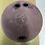 Thumbnail: 15LB Hammer Burgundy Urethane
