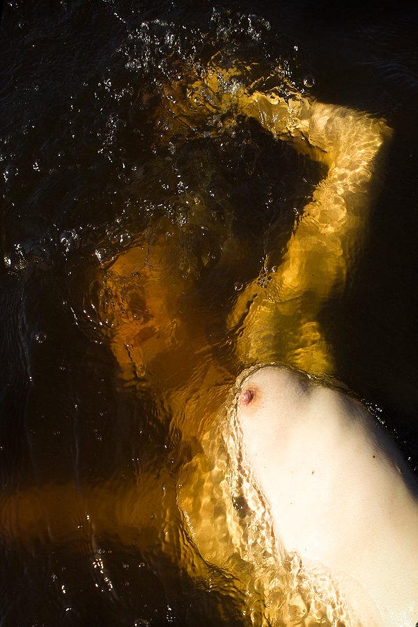 bath of venus, best of fine art