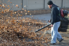 Crown Point, In, fall, clean-up, spring clean-up, leaf, blowing ,leaf raking,