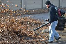 Crown Point, In, fall, clean-up, spring clean-up, leaf, blowing ,leaf raking,