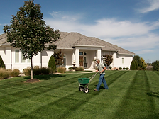 gardening lawn,garden lawn fertilizer,green grass, garden lawn grass, personal home garden lawn care