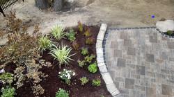 Natural Planting Cultivars
