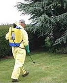 Crown Point IN, weed control, weeding, pull weeds, spraying, spraying weeds, weedless lawns, lawn cae, ash borer control