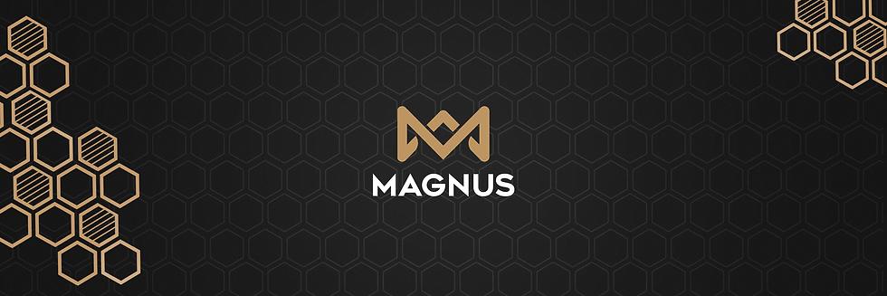 magnus strip header.png