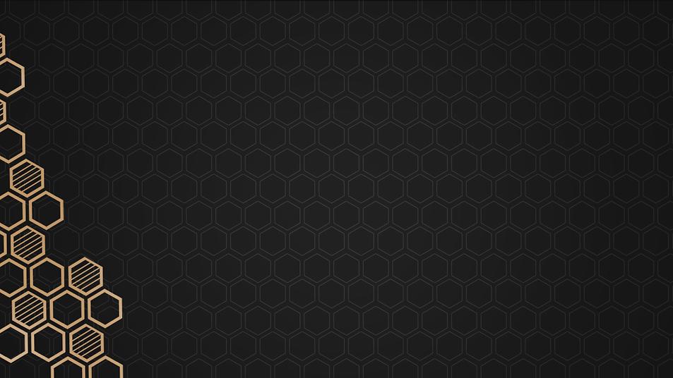 magnus website.png