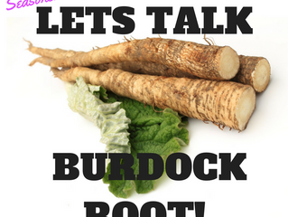 Let's Talk Burdock Root!