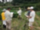 くりすたる農園の就農体験