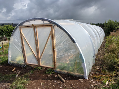 New Polytunnel, Compost Bays and  Raised Beds