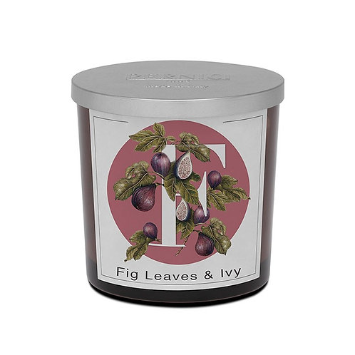 Fig Leaves & Ivy