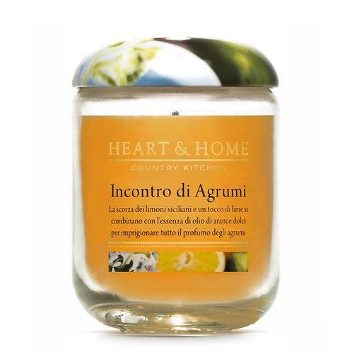 Incontro di Agrumi Large