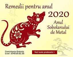 banner-pe-anul-2020-nou.jpg